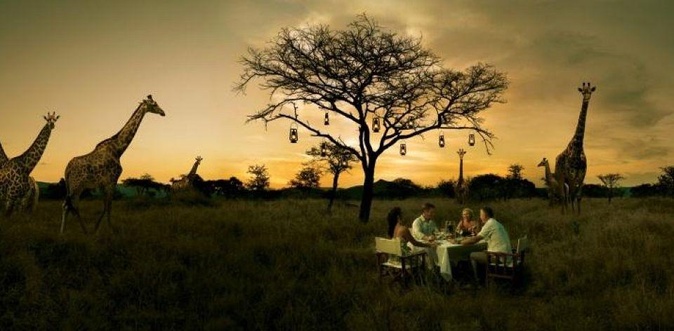 Bush-Dinner-SINGLE 2_960_472_80auto_s_c1_center_center